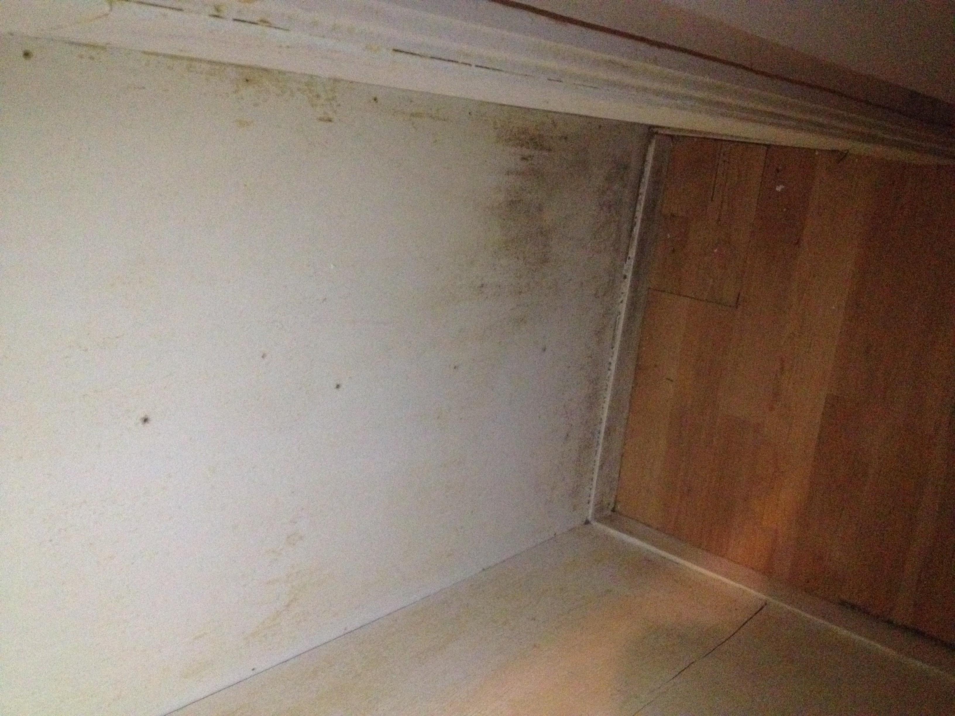 des moisissures dans votre logement que faire ombudsman de montr al. Black Bedroom Furniture Sets. Home Design Ideas