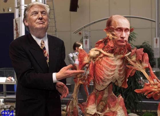 """""""Путин не зайдет"""", - ключевые цитаты Трампа про Украину - Цензор.НЕТ 6053"""