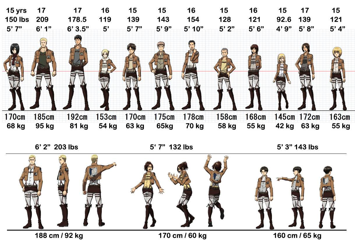 Anime Who Would You Be In Attack On Titan By Size Anime Is Love