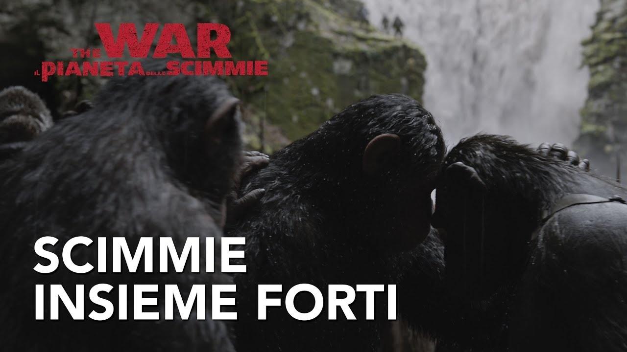 The War Il Pianeta Delle Scimmie 2017 Film Completo Sub Ita Hd