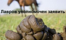 "Лавров: Зеленському заважають ""неонацисти"" - Цензор.НЕТ 7325"