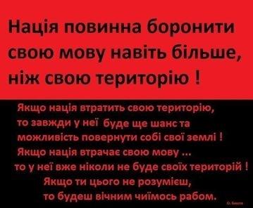 Изучение и преподавание на языках нацменьшинств не должно препятствовать изучению украинского языка, - Гриневич - Цензор.НЕТ 1474
