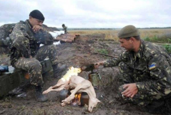 У річницю незалежності України слід пам'ятати насамперед тих, хто поліг за неї в бою, - Ярош - Цензор.НЕТ 227