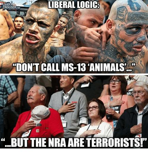 animals & terrorists