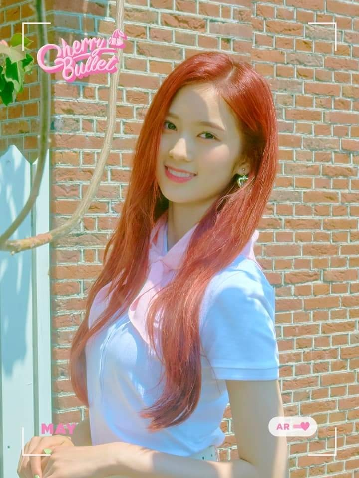 Cherry Bullet Members Profile Updated No sharing of piracy links. cherry bullet members profile updated