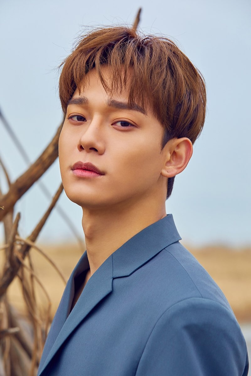 Chen (EXO) Profile and Facts
