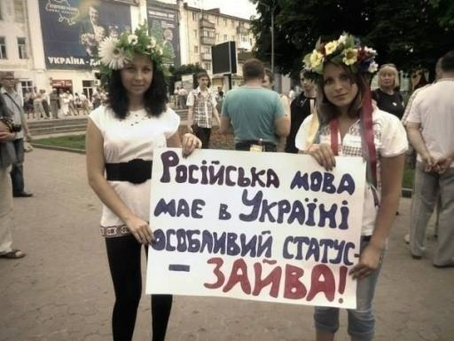 Изучение и преподавание на языках нацменьшинств не должно препятствовать изучению украинского языка, - Гриневич - Цензор.НЕТ 225