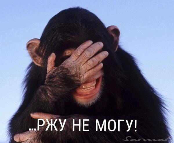 НАБУ открыло уголовное производство из-за политических преследований Порошенко, - адвокат Новиков - Цензор.НЕТ 4486