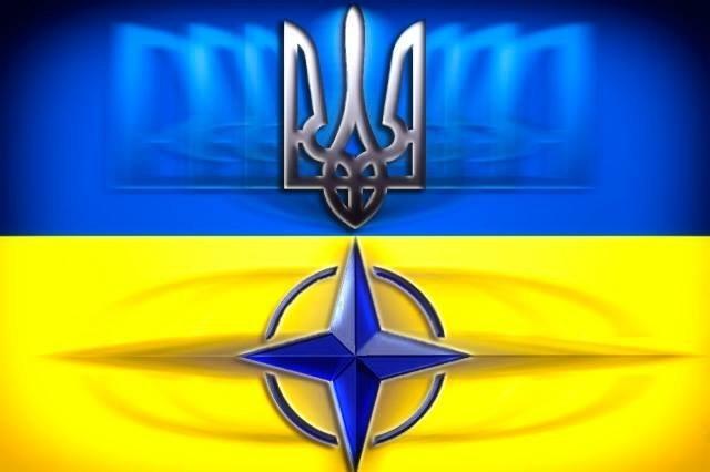 """Наймасовіший """"живий"""" прапор України створили в центрі Львова, - ОДА - Цензор.НЕТ 9197"""