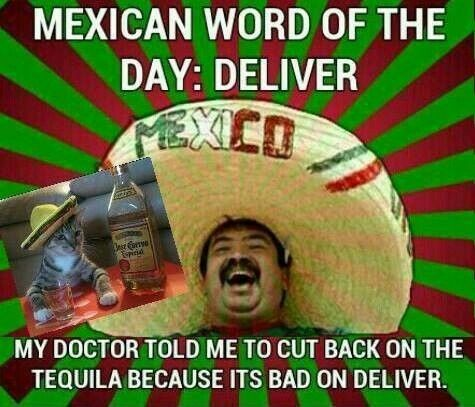 Essay mexican